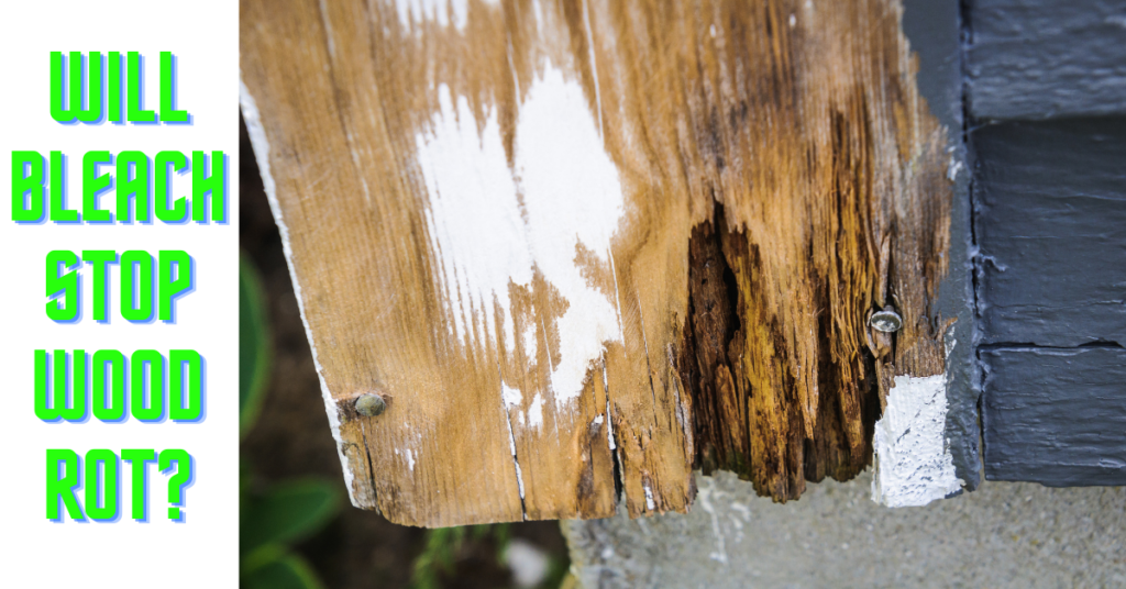 Will Bleach Stop Wood Rot